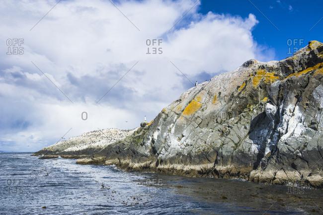Island in the Beagle channel- Ushuaia- Tierra del Fuego- Argentina- South America