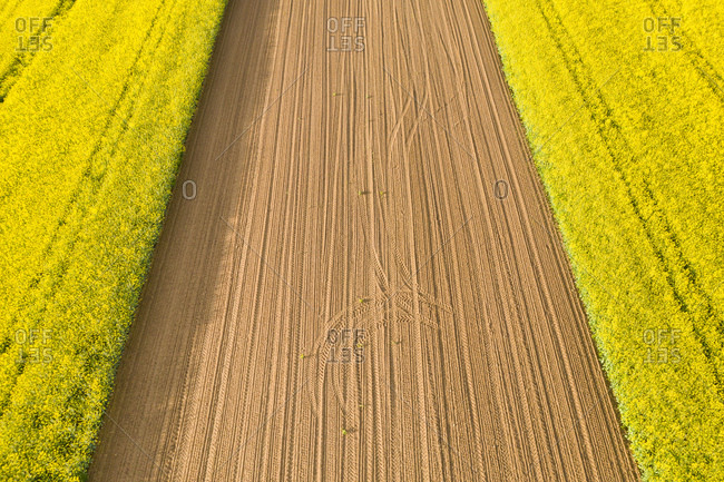 Aerial view over rape fields near Schlichten- Swabian Franconian forest- Germany