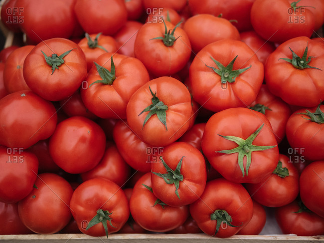 Close up of tomatoes for sale at a market