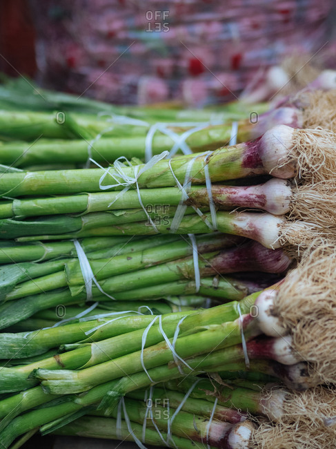 Scallions for sale at a market