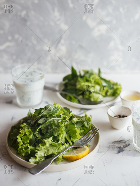 Green salad with herbs and lemon dressing served with sour yogurt dressing