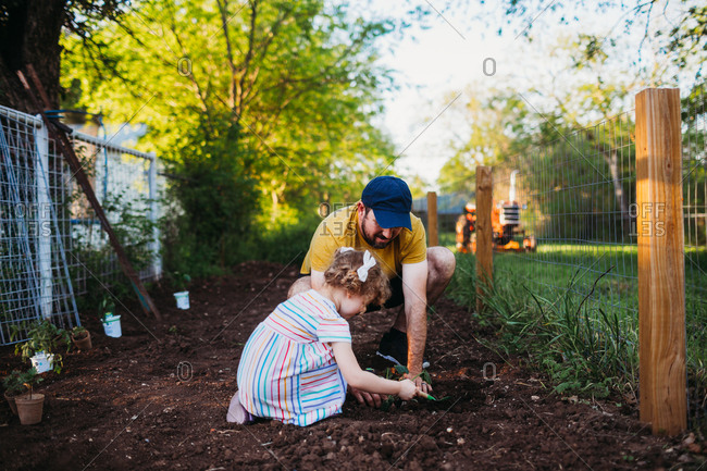 Father and daughter planting plants in garden