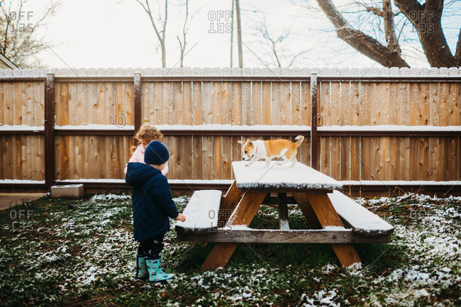 Kids playing in snow on backyard picnic table with dog