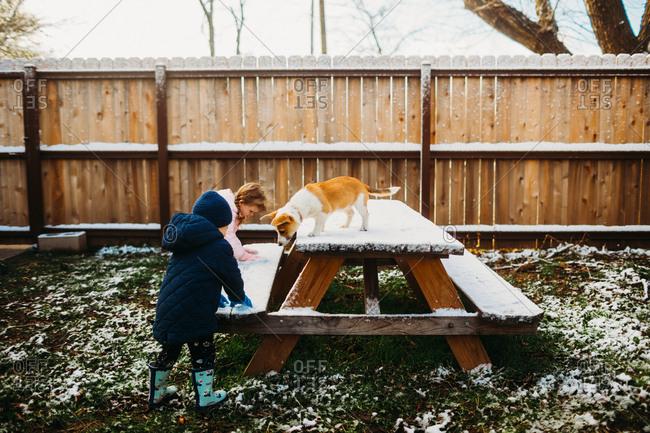 Kids playing in snow on backyard picnic table with corgi