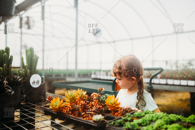 Girl looking at plants in a greenhouse
