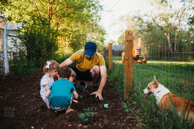 Father and kids planting plants in garden