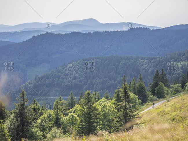 Mountain biker riding amidst forest towards Belchen summit seen from the Feldberg, Hinterzarten, Baden-W�rttemberg, Germany