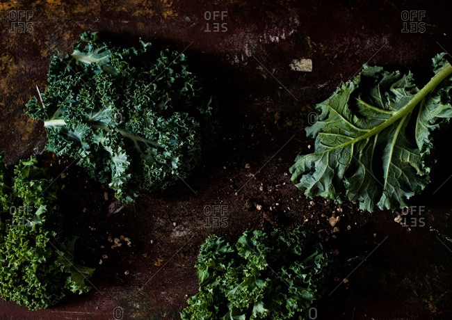 Fresh cut kale leaves on a rusty surface