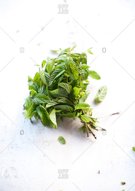 Bouquet of fresh cut mint