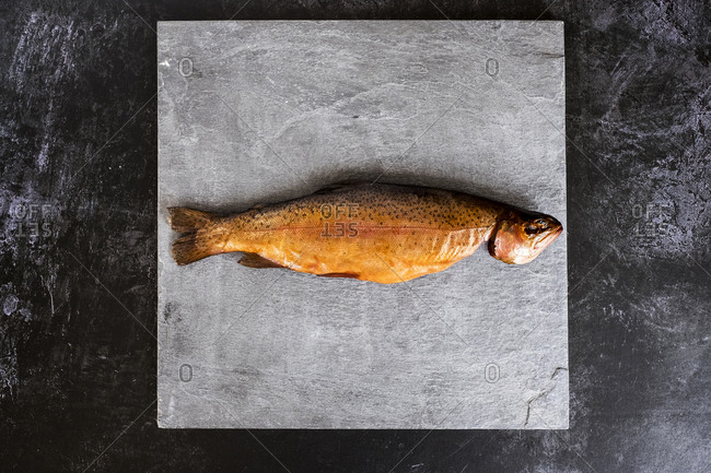 High angle close up of one freshly smoked whole trout on grey background.