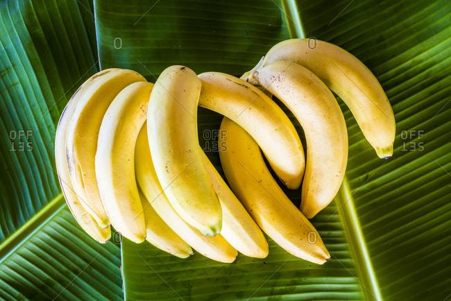 Bananas on banana leaves