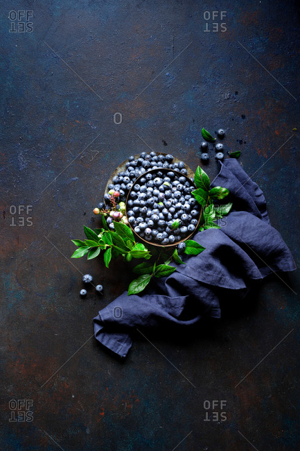 Freshly picked blueberries with leaves on blue surface