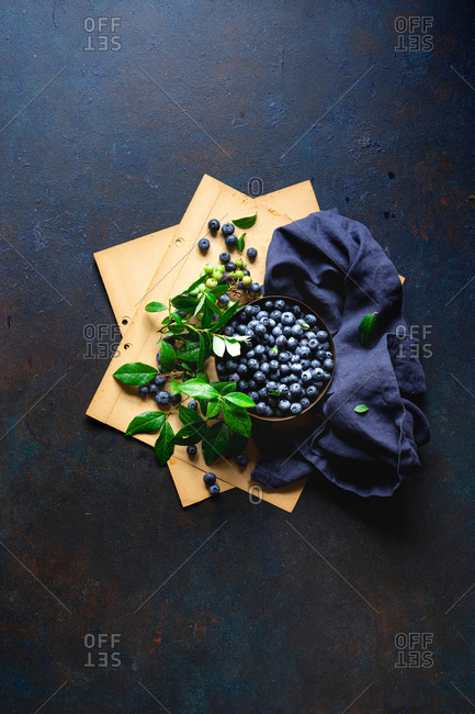 Freshly picked blueberries with leaves on dark blue surface