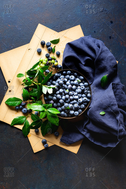 Close up of freshly picked blueberries with leaves on blue surface