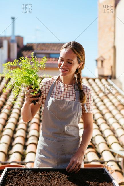 Caucasian woman gardening in a urban garden.