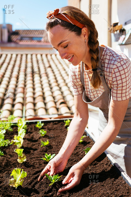 Caucasian woman planting in an urban garden in a rooftop.