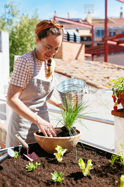 Caucasian woman gardening with a bucket in an urban garden of a rooftop.