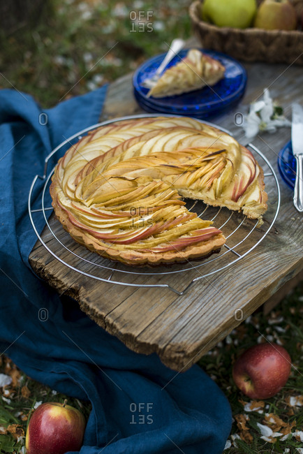 Tasting an apple pie at a picnic in the garden