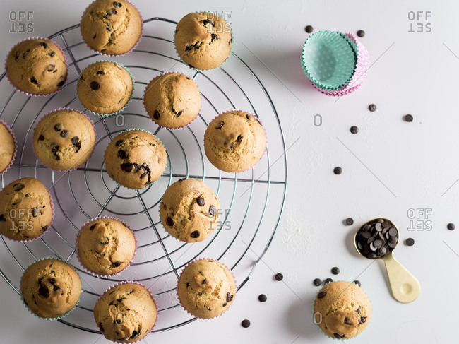 Chocolate chips muffins on a cooling rack