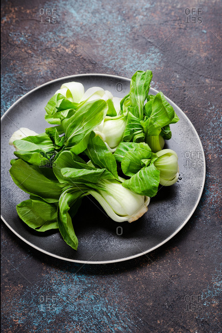 Fresh bok choy on dark plate over dark background