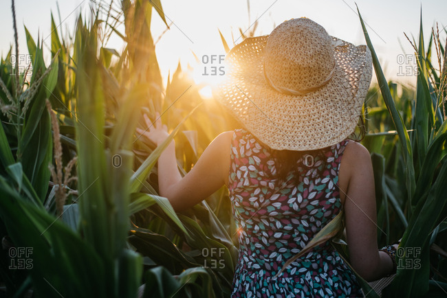 Pretty woman in colorful dress and flaxen hat going through leaves of corn