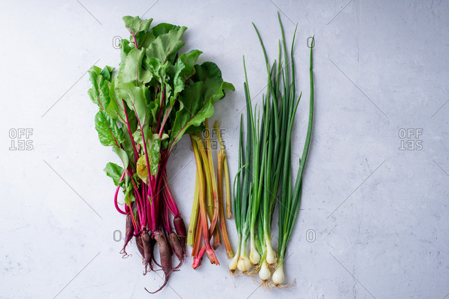 Fresh vegetables from the farm - beets, rhubarb and onions. Multicolored stems