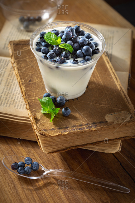 Natural yogurt with blueberries in a plastic bowl