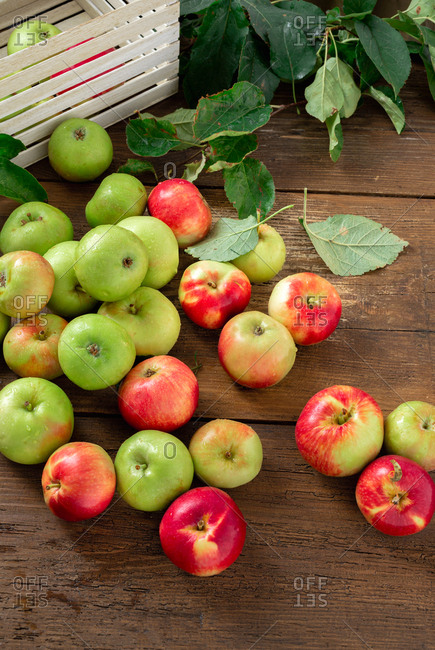 Freshly picked apples on wooden table