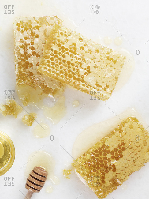 An array of fresh honeycomb