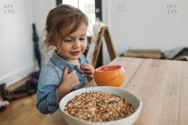 Toddler girl making a birdfeeder with a grapefruit