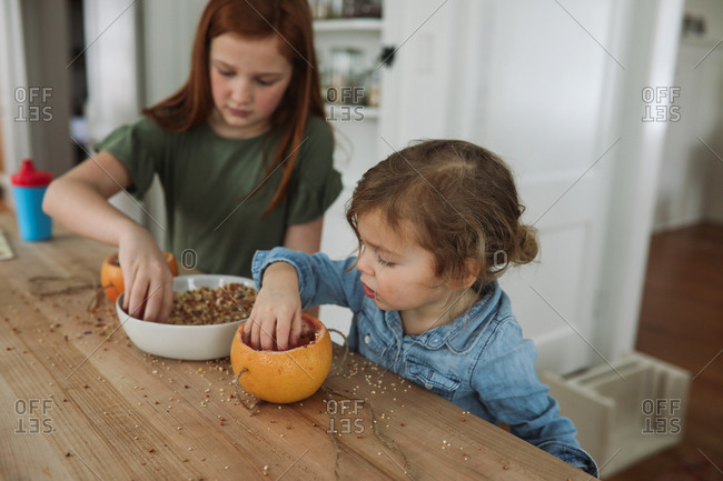 Two girls making a birdfeeder with a grapefruit