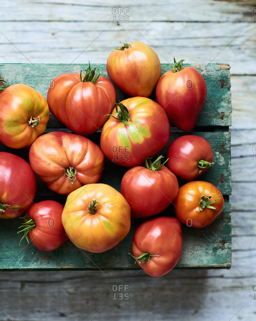 Tomato harvest on wooden box