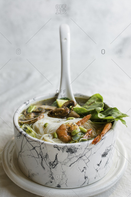 Bowl of Asian Noodle Soup with white ladle