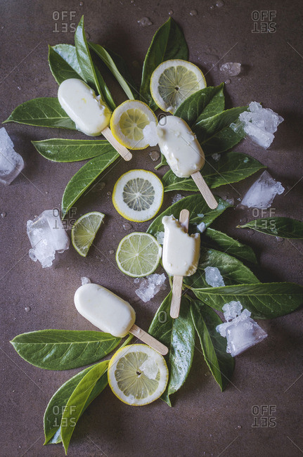 Sweet ice cream served with leaves and lemon slices