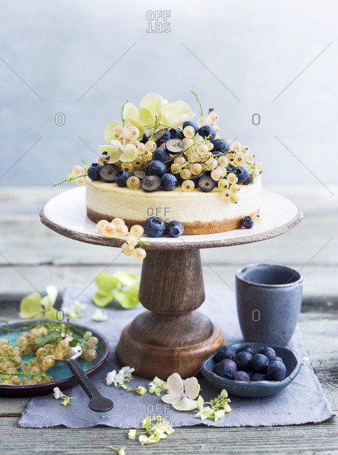 Cheesecake with blueberries and white currants