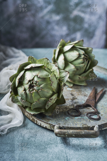 Still life of artichokes with knife