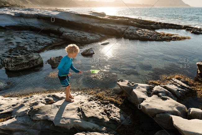 Young boy playing with net in tide pools on coast