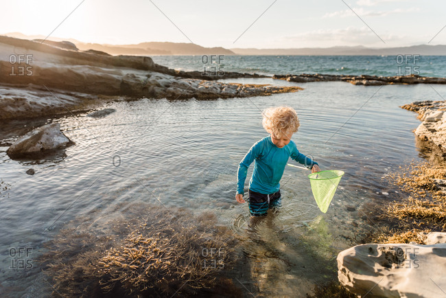 Young blonde boy playing with net in tide pools on coast