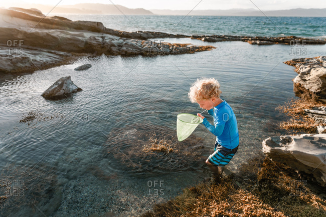 Boy playing with net in tide pools on coast