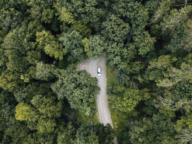 Aerial view of a car on a remote road in a forest