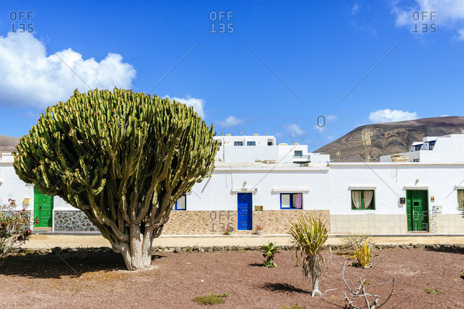 La Graciosa, Canary Islands, Spain - June 28, 2019: Typical street with houses and cacti