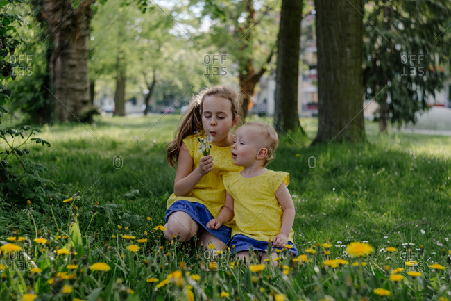 Two sisters sitting together on a meadow blowing blow balls