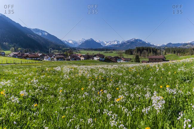 Germany- Bavaria- Allgaeu- Oberallgaeu- Allgaeu Alps- Illertal- Rubi