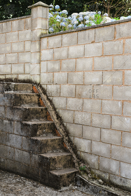 Brick fence and stairs by hydrangea flowers