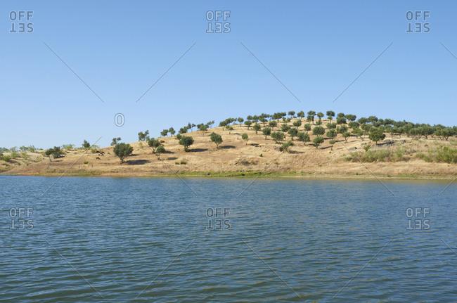 Rural scene on the coast of the Alentejo region, Portugal