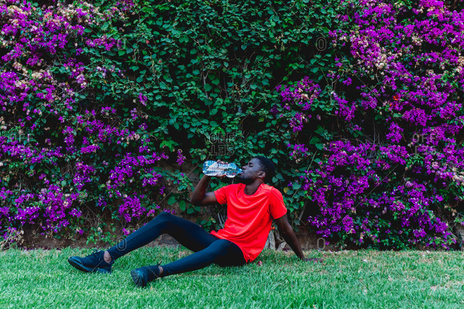 Slim african american sportsman sitting on green meadow near hedge with purple flowers and drinking water from bottle