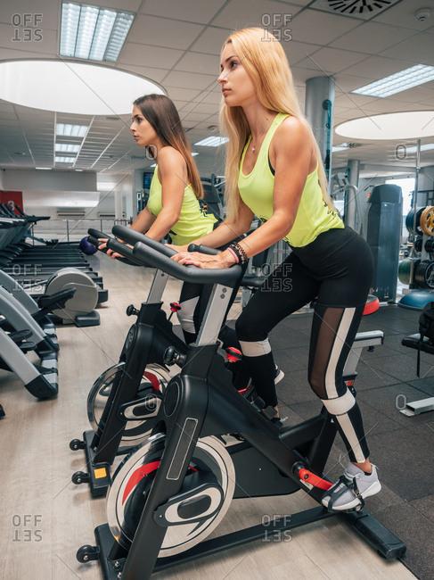 Side view of slim ladies in sportswear training on modern bicycle machines in modern gym having cardio workout