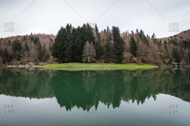 Conifer trees growing near hills on shore of lake with tranquil water surface in quiet countryside