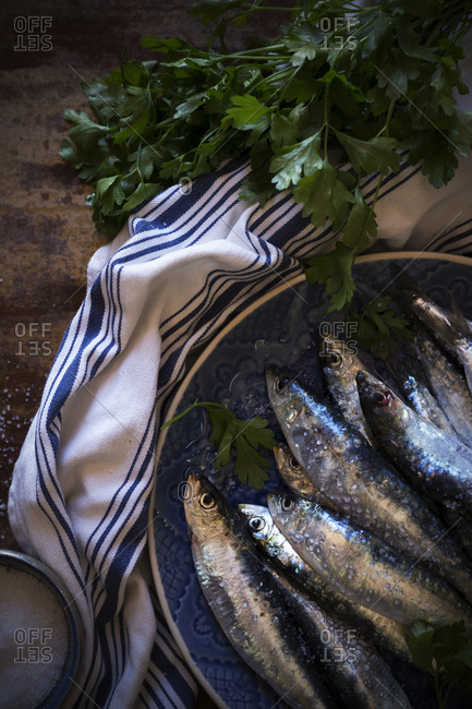 Salty anchovies with parsley - Offset