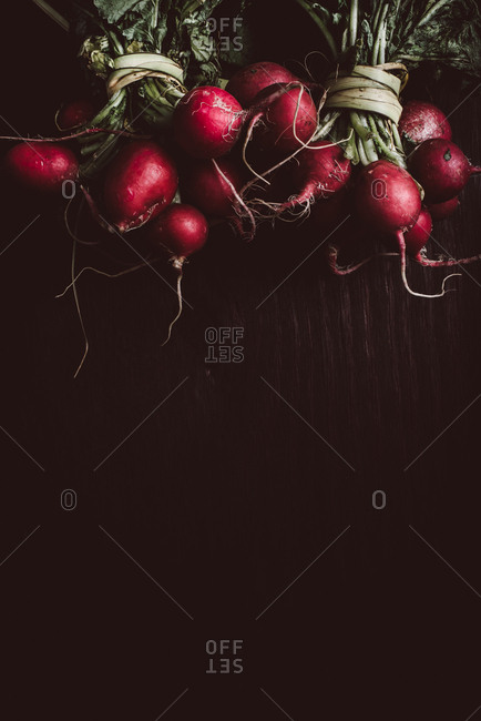 Red radish bunches on dark background